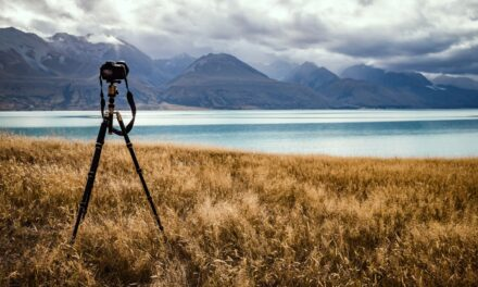 Capturing a Landscape's Light